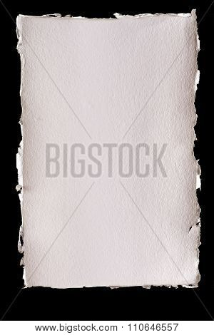 Isolated textured ivory background paper with torn edges