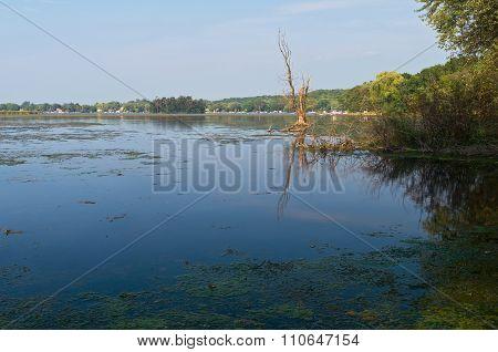 Whitewater Lake Vista