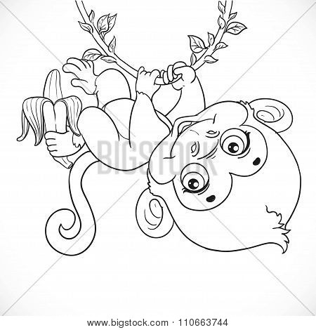 Cute Baby Monkey With Banana Hanging On The Vine Outlined Isolat