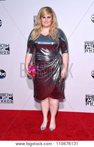 LOS ANGELES - NOV 22:  Rebel Wilson arrives to the American Music Awards 2015  on November 22, 2015 in Los Angeles, CA.