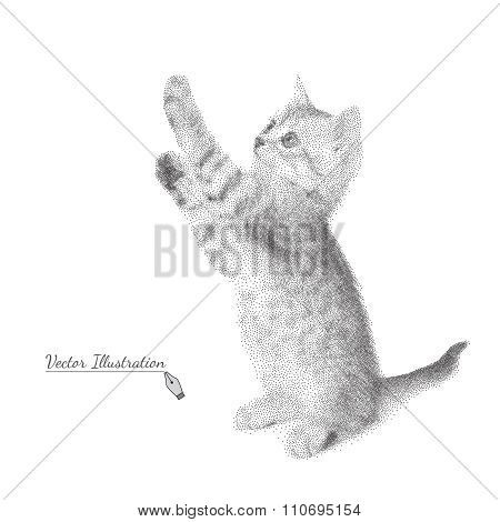 Kitten in black and white graphic style costs on legs.