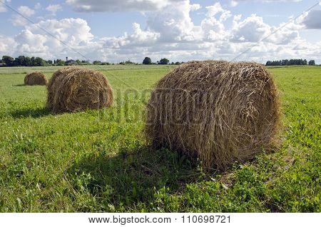 Rural Landscape With Haystacks And Farm