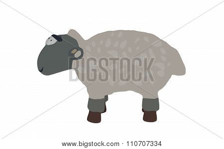 Funny Lamb Isolated on White Background.
