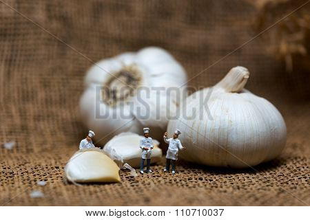 Cooking Process Concept. Miniature Cooks With Garlic Bulb. Color Tone Tuned