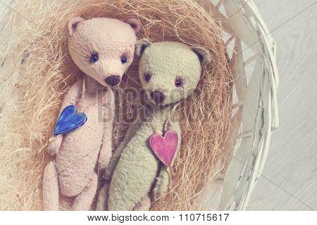 couple Teddy bears lie in basket