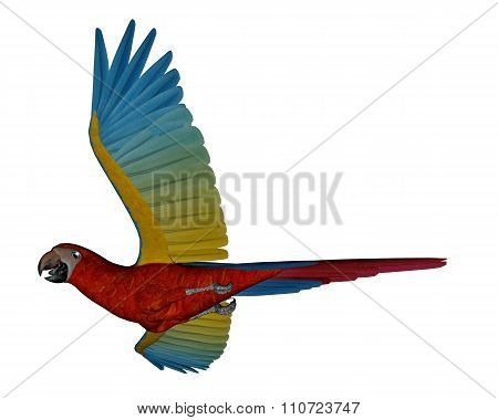 Scarlet macaw, parrot, flying - 3D render