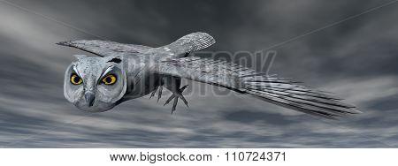 Scops owl - 3D render