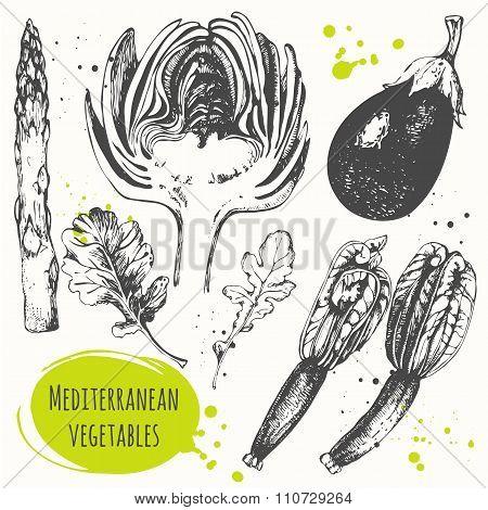 Set of hand drawn flower zucchini, artichoke, eggplant, arugula, asparagus.