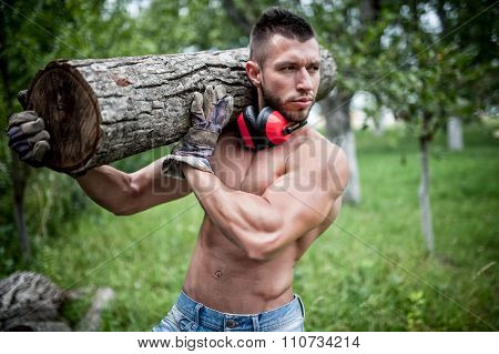 male lumberjack handsome man cutting trees and moving logs around