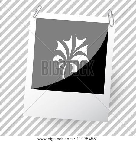 abstract plant. Photoframe. Raster icon.