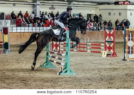 young male rider horse overcomes obstacles sports complex