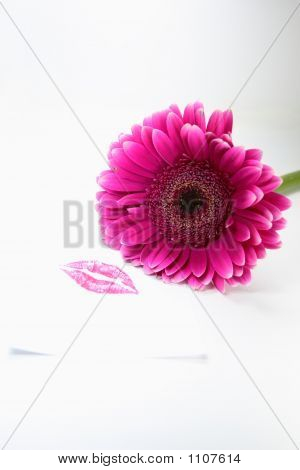 Pink Kiss And Flower
