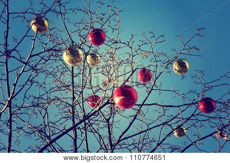 Bright Colored Christmas Decorations On A Defoliated Tree In Moscow, Russia