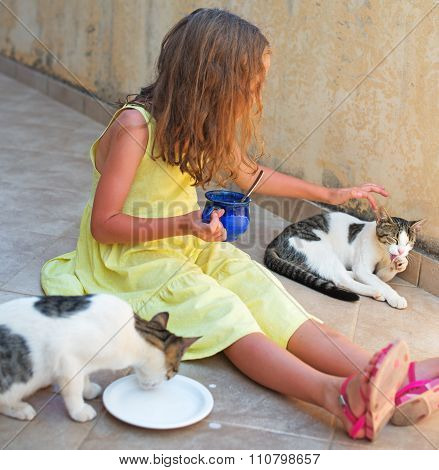 Cute Little Girl Feeding Two Cats.