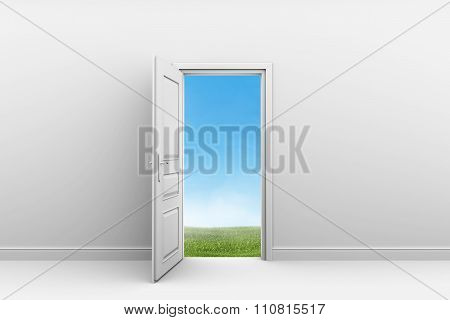 White room with open door. Green grass lawn outdoors