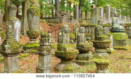 Many old stone image of Buddha