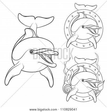 Set of dolphin logo design element. Isolated vector objects
