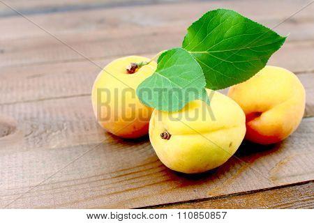 Organic Fresh Apricots
