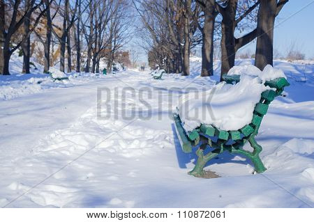 Benche in a park covered with snow