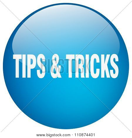Tips & Tricks Blue Round Gel Isolated Push Button