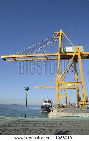 Large Crane And Cargo Ship