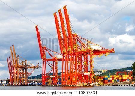 Gdynia. Marine cargo port.