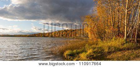 Autumn Evening Light