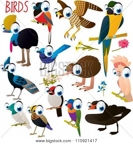 big vector set of funny comic cartoon animals: birds: cockatoo, macaw, parrot, kiwi, swan, pheasant, cassowary, falcon and others