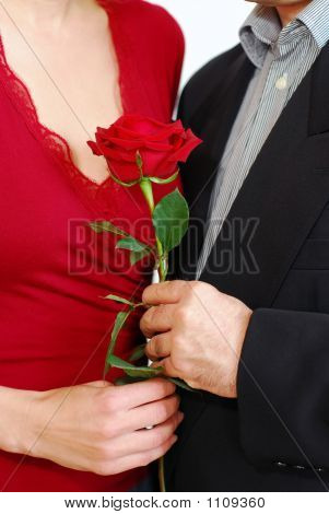Couple Rose