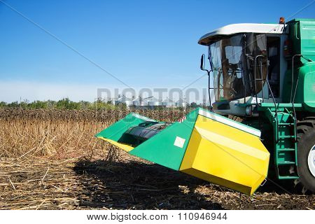 Combine Harvests In The Field