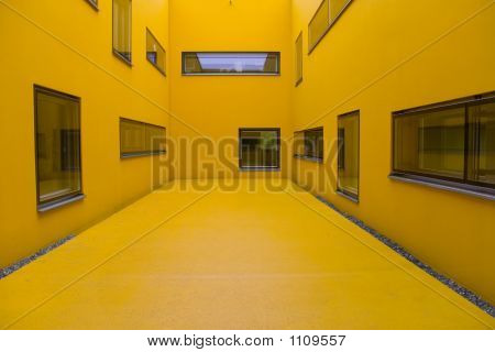 Animal Hospital Yellow