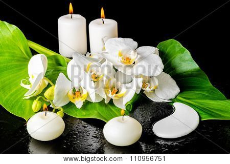 Spa Concept Of Orchid Flower, Phalaenopsis, Leaf With Dew, Candles And Yin-yang Of Stone Texture On