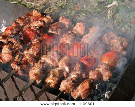 Barbeque In The Wood