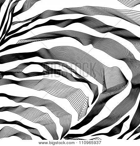 Zebra Stripes Pattern outline background. Vector illustration