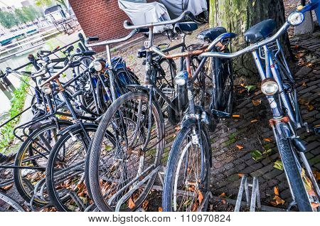 Bikes On The Streets Of Rotterdam