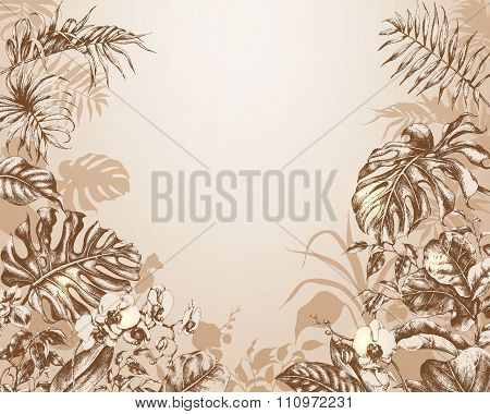 Natural  Background With  Tropical Plants.