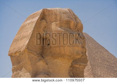 Head Of  The Great Sphinx.