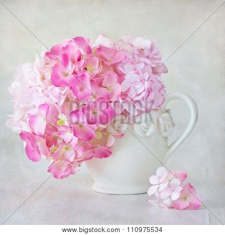 Beautiful pink hydrangea flowers.