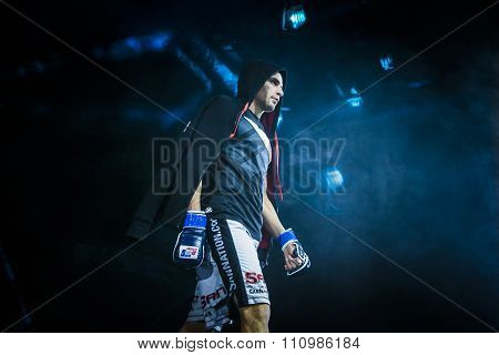 closeup athlete mixed martial arts fighter during presentation before fight