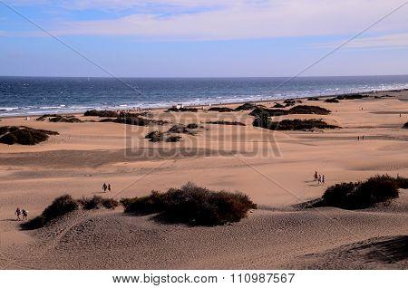 Playa del Ingles Tropical Beach