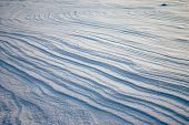 Weathering On The Snow Plain poster