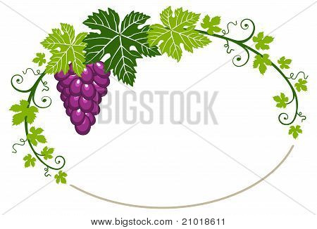 Grapes frame with leaves on white background