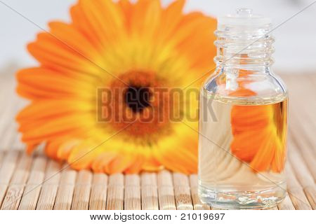 Close up on a glass phial and a sunflower