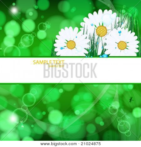 abstract vector background with daisies and grass and drops.