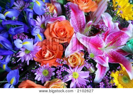 Bouquet Of Vibrant Colors