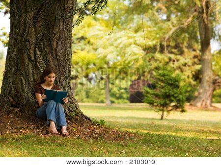 Reading Solitude