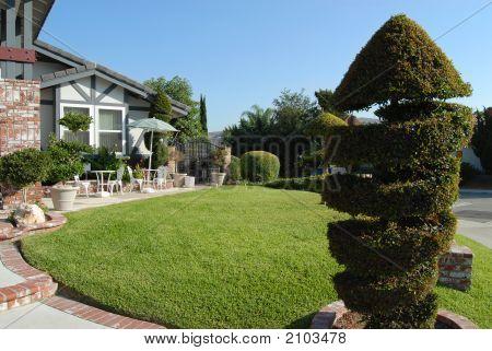 Elegant Front Yard