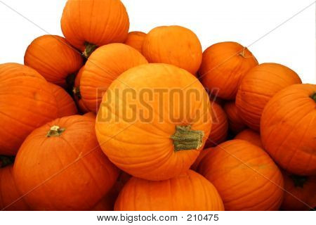 Pumpkin Pile Isolated On White