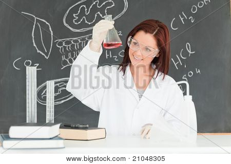 Young Scientist Looking At A Conical Flask