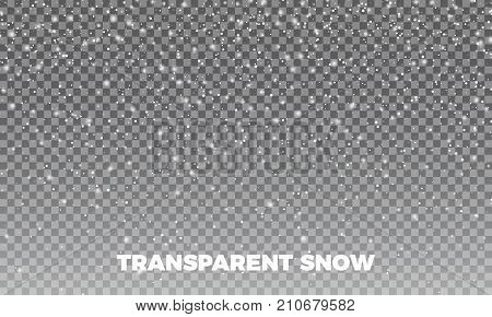 Snow Vector transparent
